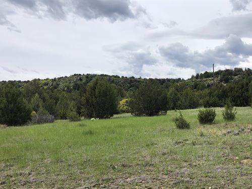 Little Owl Canyon Ranch Southeast : Beulah : Pueblo County : Colorado