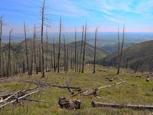 Ristvue Ranch : Bellvue : Larimer County : Colorado