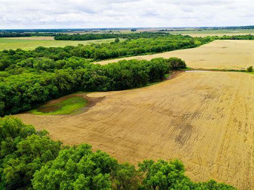 Smoots Creek Longrun Hunt & Farm : Murdock : Kingman County : Kansas