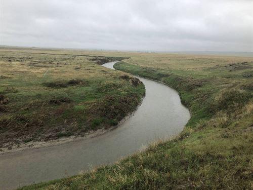 Salmond 37 North : Choteau : Teton County : Montana