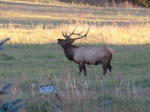 Windsong Ranch, Gardner, CO : Gardner : Huerfano County : Colorado