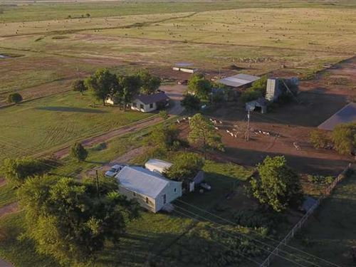 215 Acre Farm With 2 Homes in Arch : Windthorst : Archer County : Texas