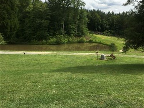 Beautiful Land With Pond And Views : Walnut Cove : Forsyth County : North Carolina