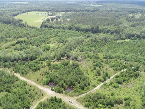 267 Acres Land For Sale Ware CO : Nicholls : Ware County : Georgia