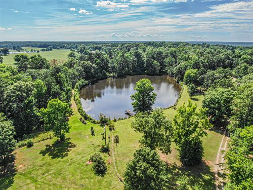 144 Acres With 3 Acre Pond : Haddock : Jones County : Georgia