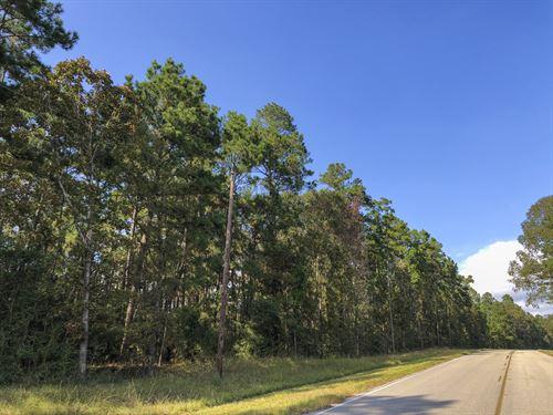 21 Ac Waterwood Estates Tr 4 : Huntsville : San Jacinto County : Texas