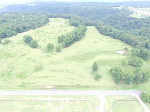 Berry Mountain 44 Ac & Pond : Cleveland : Saint Clair County : Alabama