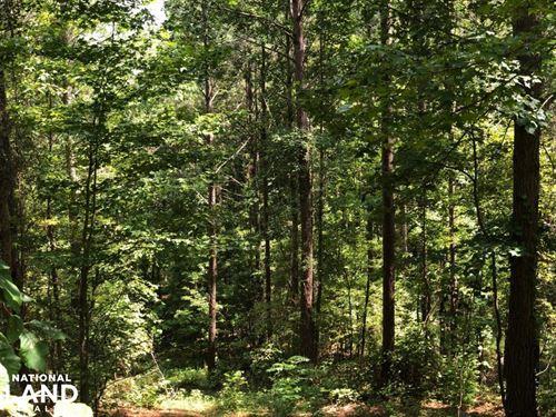 Banner Long Beard Tract : Banner : Calhoun County : Mississippi