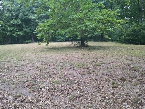 Large Wooded Acreage Madison Cnty : Huntsville : Madison County : Arkansas