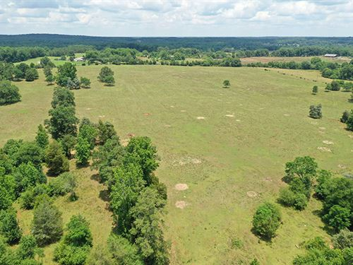 Awesome Pasture Home Site/Mini Farm : Barnesville : Lamar County : Georgia