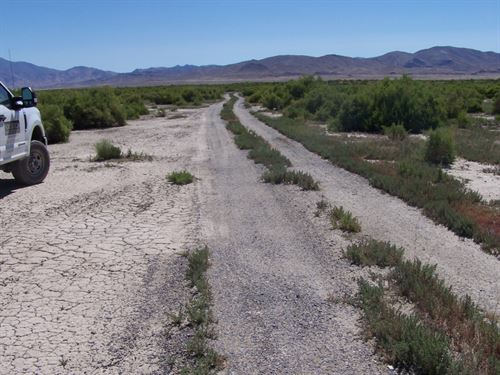 Near Humboldt River, $255 Per Month : Lovelock : Pershing County : Nevada