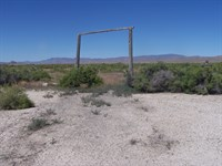 Nice Land Near Humboldt River : Lovelock : Pershing County : Nevada
