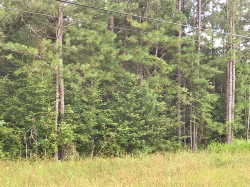 Hwy 331 Property : Luverne : Crenshaw County : Alabama