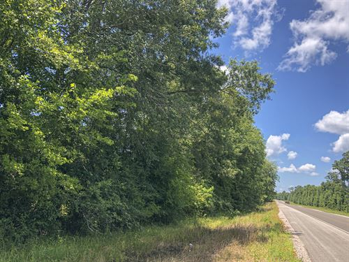 428 Ac Menard Creek West 311041 : Cleveland : Liberty County : Texas