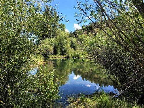 River Acreage : Lake City : Hinsdale County : Colorado