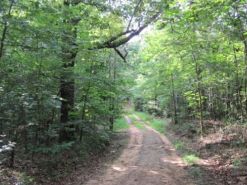 19 Acres In Tippah County In Blue : Blue Mountain : Tippah County : Mississippi