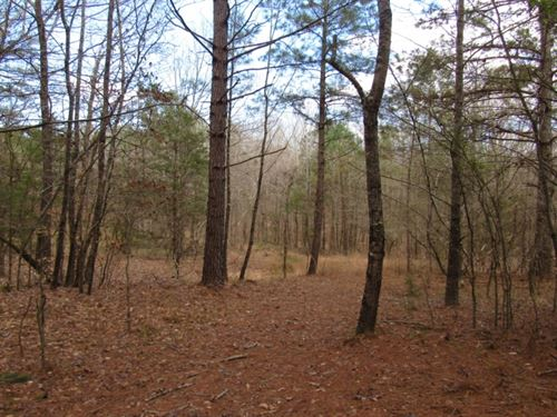 50.68 Acres In Lafayette County : Como : Lafayette County : Mississippi