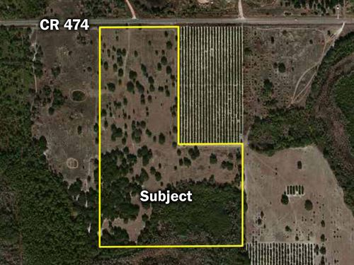 Clermont 57 Acres : Clermont : Lake County : Florida