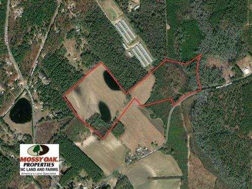 70 Acres of Farm And Timber Land : Laurel Hill : Scotland County : North Carolina