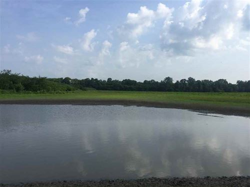 Big Buck Bottoms : Hillsdale : Vermillion County : Indiana