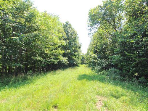 Twp Hwy 2323, 83 Acres : Woodsfield : Monroe County : Ohio