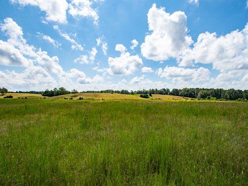 Value And Views In Vandiver : Vandiver : Shelby County : Alabama