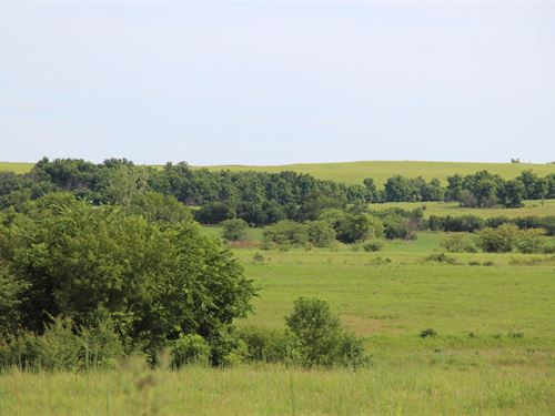 160 Acres Hunting, Pasture, Farm : Fredonia : Wilson County : Kansas