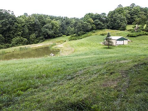 Tr 55, 21 Acres : Coshocton : Ohio
