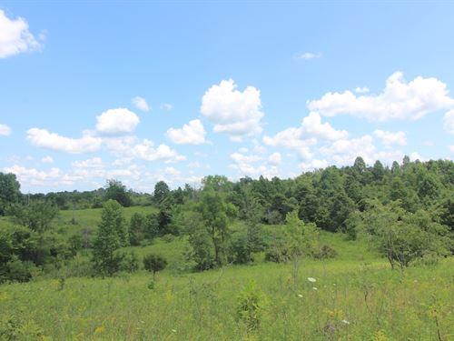 Union Hill Rd, 31 Acres : Blue Rock : Muskingum County : Ohio