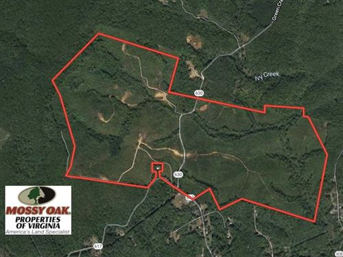 459 Acres of Timber And Hunting LA : Schuyler : Nelson County : Virginia