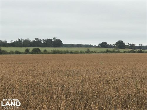 Buena Vista Black Prairie Farm : Okolona : Chickasaw County : Mississippi