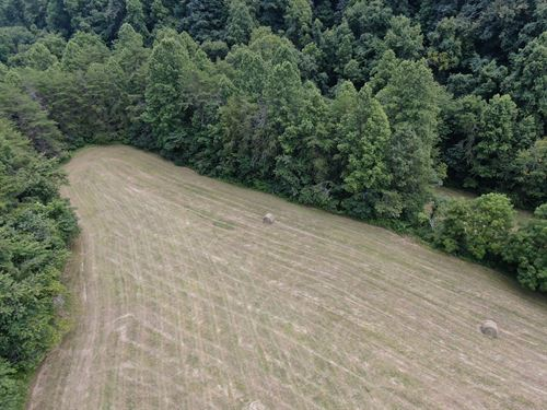 Tennessee Hunting Land Claiborne : Tazewell : Claiborne County : Tennessee