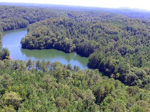 30.616+/- Acres Bartow County : White : Bartow County : Georgia