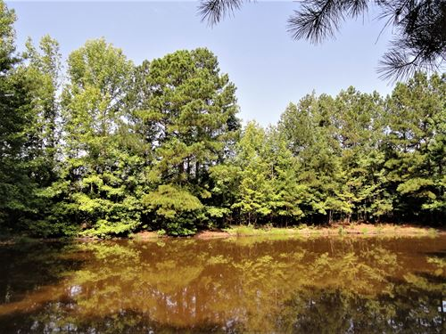 Scotts Ferry Tract D : Troy : Greenwood County : South Carolina
