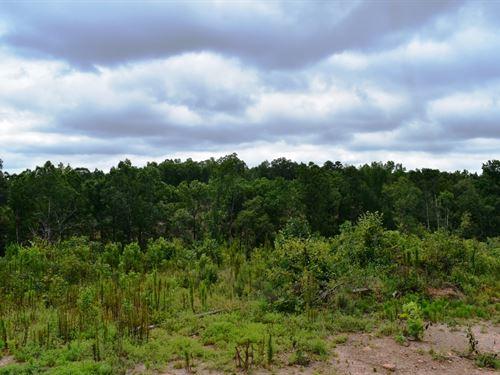 Waymanville Road Tract : Thomaston : Upson County : Georgia