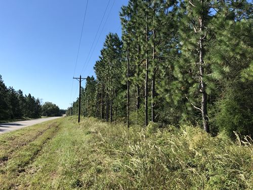 Price Reduced Flat Creek Hwy 153 : Samson : Geneva County : Alabama