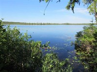 Tracy Lake Cabin, 328 Acres : Covington : Baraga County : Michigan