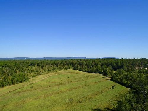 Chelsea Tract / Yellowleaf Creek Fr : Chelsea : Shelby County : Alabama