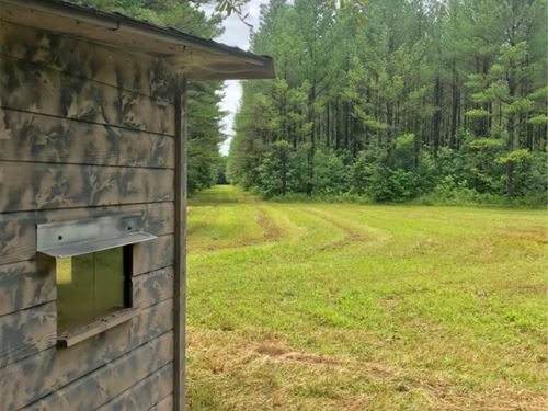99 Acres In Choctaw County In Acker : Ackerman : Choctaw County : Mississippi