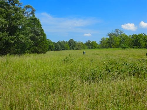 Hunting Land With Cabin For Sale : Thayer : Oregon County : Missouri