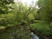 Family Camp Spot On Fish Creek : Camden : Oneida County : New York