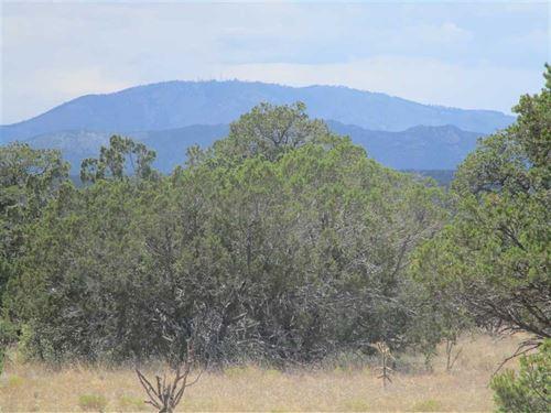 40 Acres Lot 14 Corona Ranch : Corona : Torrance County : New Mexico