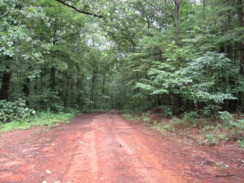 358.53 Acres In Tippah And Benton : Blue Mountain : Tippah County : Mississippi