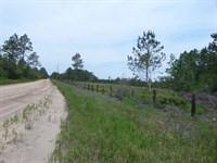 Quiet, Peaceful Sanctuary : Hortense : Brantley County : Georgia