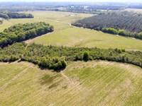 Conecuh Co, Al Row Crop Farm Land : Castleberry : Covington County : Alabama