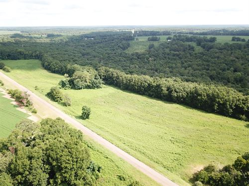23.5 Acres Tom Fain Rd, Geneva : Geneva : Alabama
