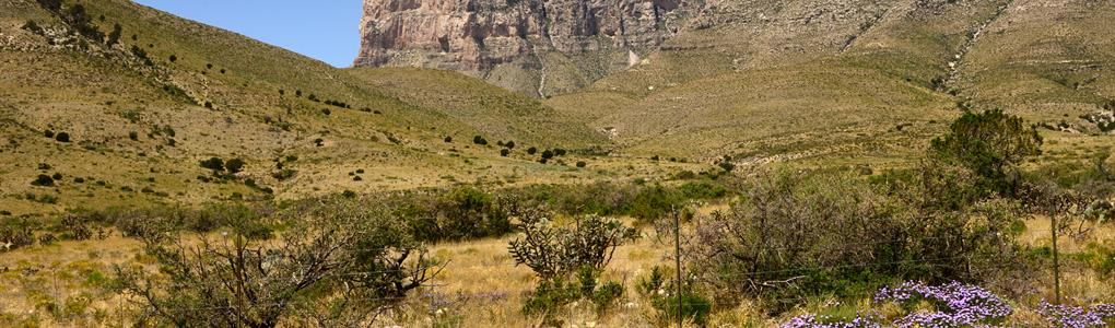20 Acres Only $99 Dn, $99/Mo : Sierra Blanca : Hudspeth County : Texas