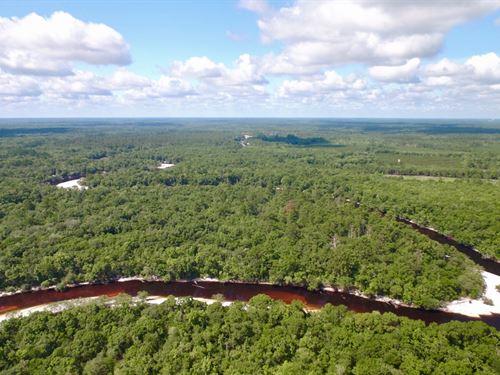 Riverfront Property, Turkey Ridge : Nahunta : Brantley County : Georgia
