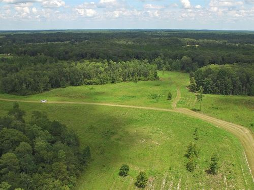J Hook Tract : Greenville : Madison County : Florida