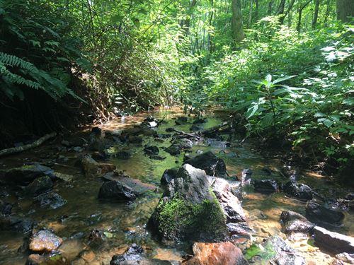 16.22 Acres Boarding Preserve : Landrum : Greenville County : South Carolina